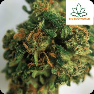 Buy Weed Online | Buy Marijuana Online | Buy THC Vape Cartridges Online