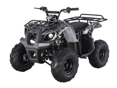 Buy Taotao 125D 110cc Kids ATV