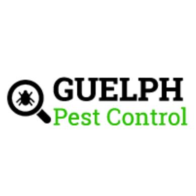 Flea Extermination & Control Services Guelph