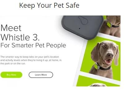 Learn Animal Communication, Pet Loss, Deceased Pets