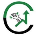Capital Investor Icon
