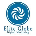 Elite Globe Icon