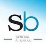 BD seo company Icon