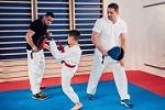 AK Karate by Greg Cole Icon
