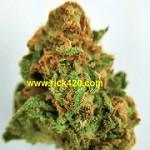 Rick420 Marijuana Dispensary Icon