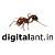 Digitalant Icon