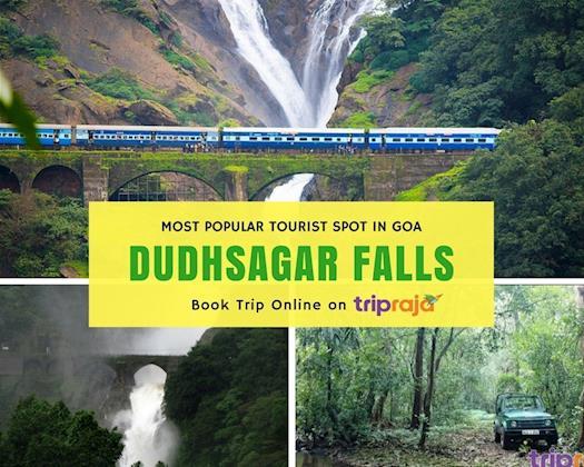 Dudhsagar Waterfall Tours & Jungle Safari Tours in Goa