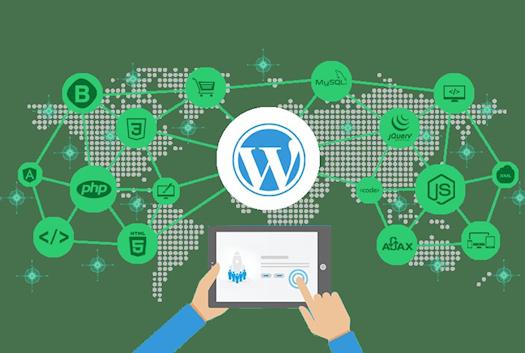 Exaalgia Web Design