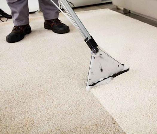 carpet cleaning marina del rey
