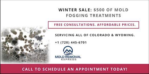 Mold fogging treatment in Denver