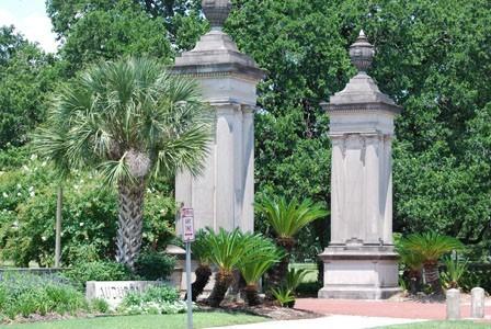 Bayou Tree Service