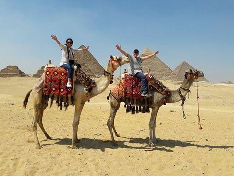 Transito Egipto a el Cairo y Alejandria