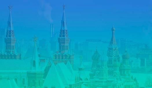 Russian Visa Online