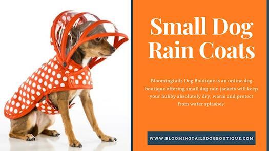 Small Dog Rain Jacket