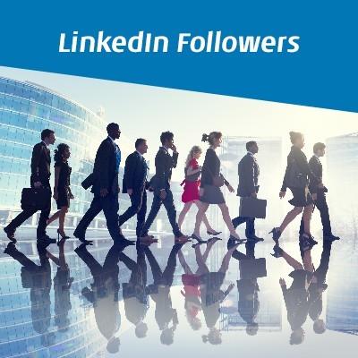 Buy LinkedIn Company Followers - Buy LinkedIn Followers