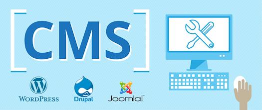 CMS for Business & Website