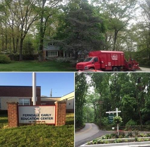 Tree Trimming Columbia, Tree Removal Columbia, Tree Service Columbia MD