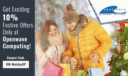 Christmas Offer for Magento Website Development & Customization