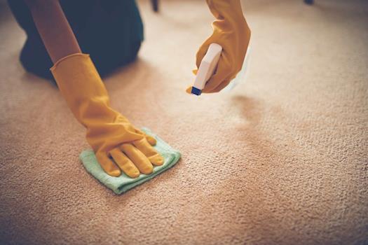 Arbuckle Carpet Care LLC
