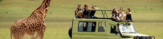 Camping Safari to Masai Mara Kenya