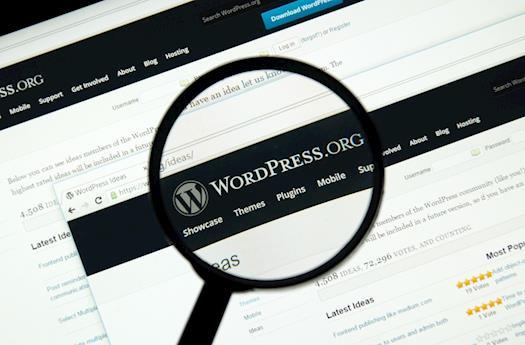 WordPress CMS Development in United States