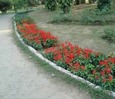 Landscape Gardening Barrhead