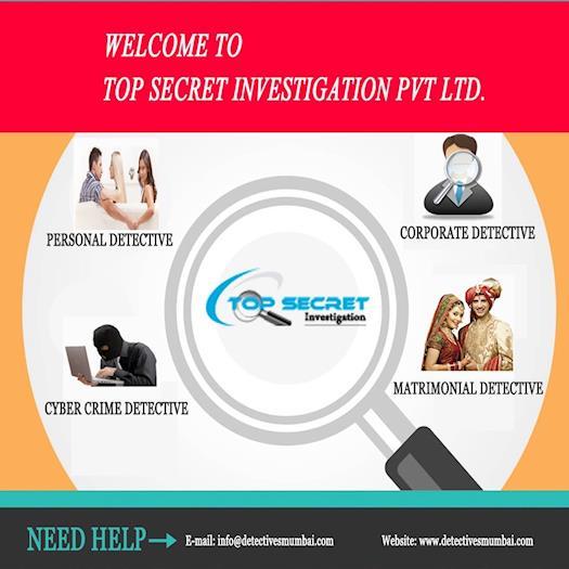 Top Secret Investigation