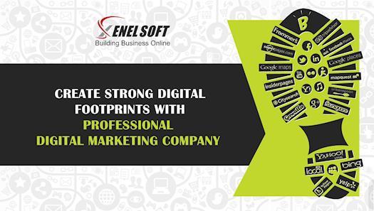 Professional Digital Marketing Company India