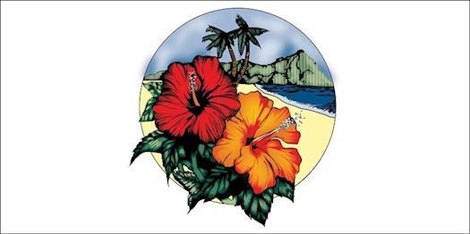 Beauteous-Bride-Hawaii-Pediatric-Vector-Design