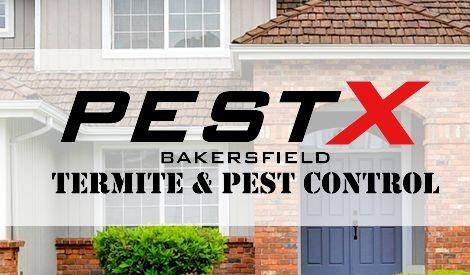 PESTX BAKERSFIED PEST CONTROL