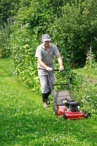 Rigos Landscaping