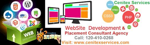 Web Design Agency In Delhi