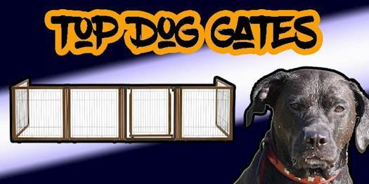 Best Indoor Dog Gates | Pet and Baby Gates