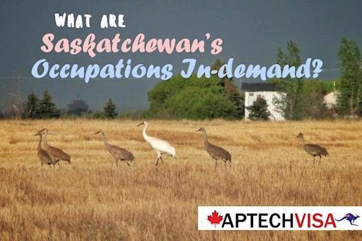 SINP - Saskatchewan Immigrant Nominee Program Process