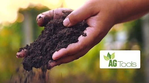 Food Waste Management Strategies | Food Waste Management & Solutions