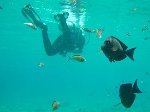 Scuba Diving at Grand Island