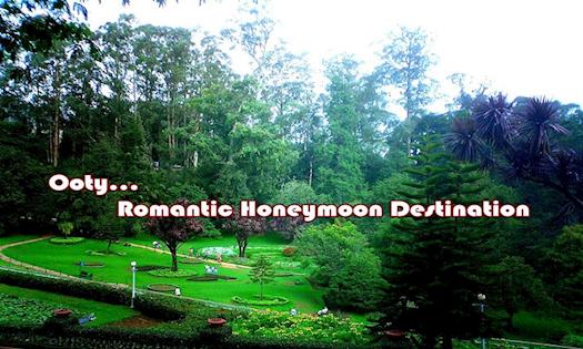 Romantic Ooty Honeymoon Holidays