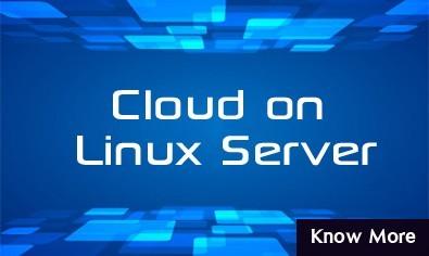 Linux VPS Hosting HostingRaja