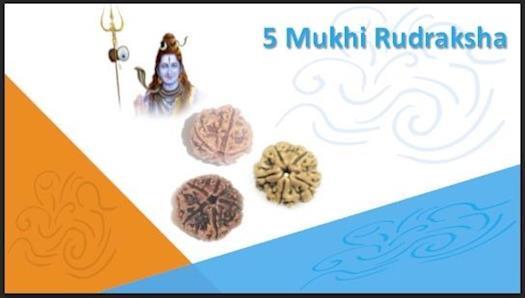 5 Mukhi Rudraksha to overcome fear, reduce stress and nervousness