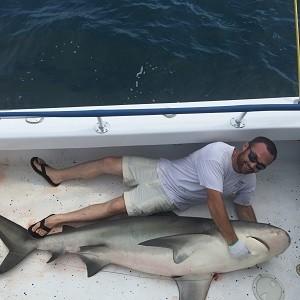 Shark Fishing in Florida