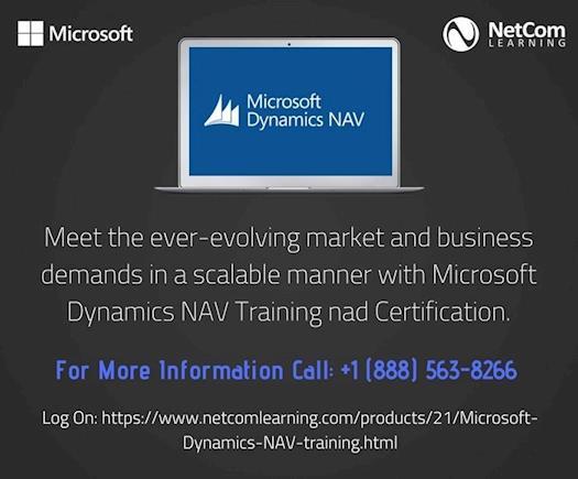Meet ever-evolving business demands with Microsoft Dynamics NAV.