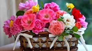 Send online flowers to Meerut
