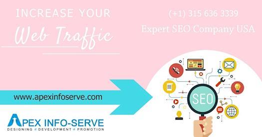 Expert SEO Company USA | Apex-Info-Serve