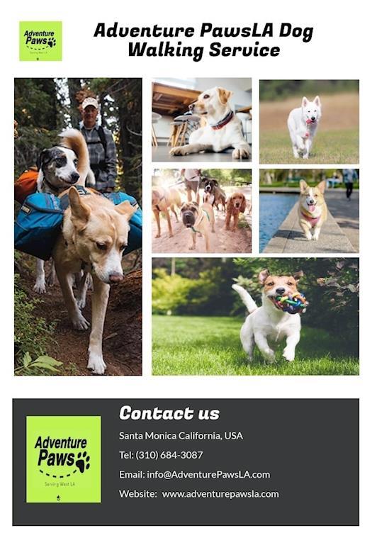 Adventure PawsLA Dog Walking Service