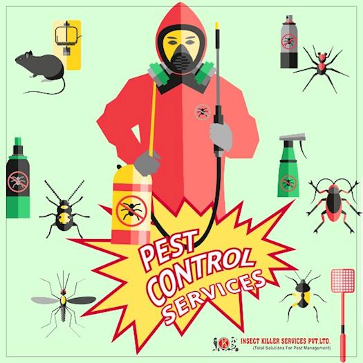 Complete Pest Control Service In Jaipur
