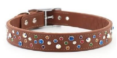 Petiquette Collars2