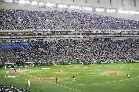 Japan vs Georgia Rugby