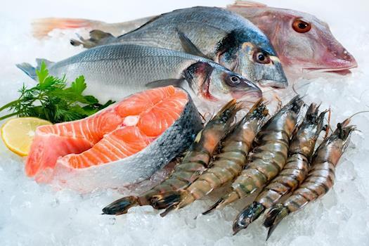Reliable Wholesale Seafood Distributor